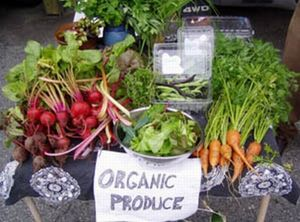 green_basics_organic_produce_s